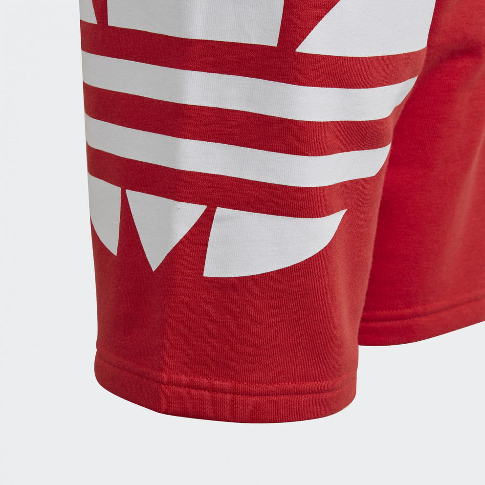 adidas Originals Big Trefoil Kids' Shorts