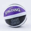 Spalding Tune Squad Micro Mini Basketball Board