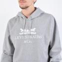 Levis Graphic Po Hoodie B 90S Logo T