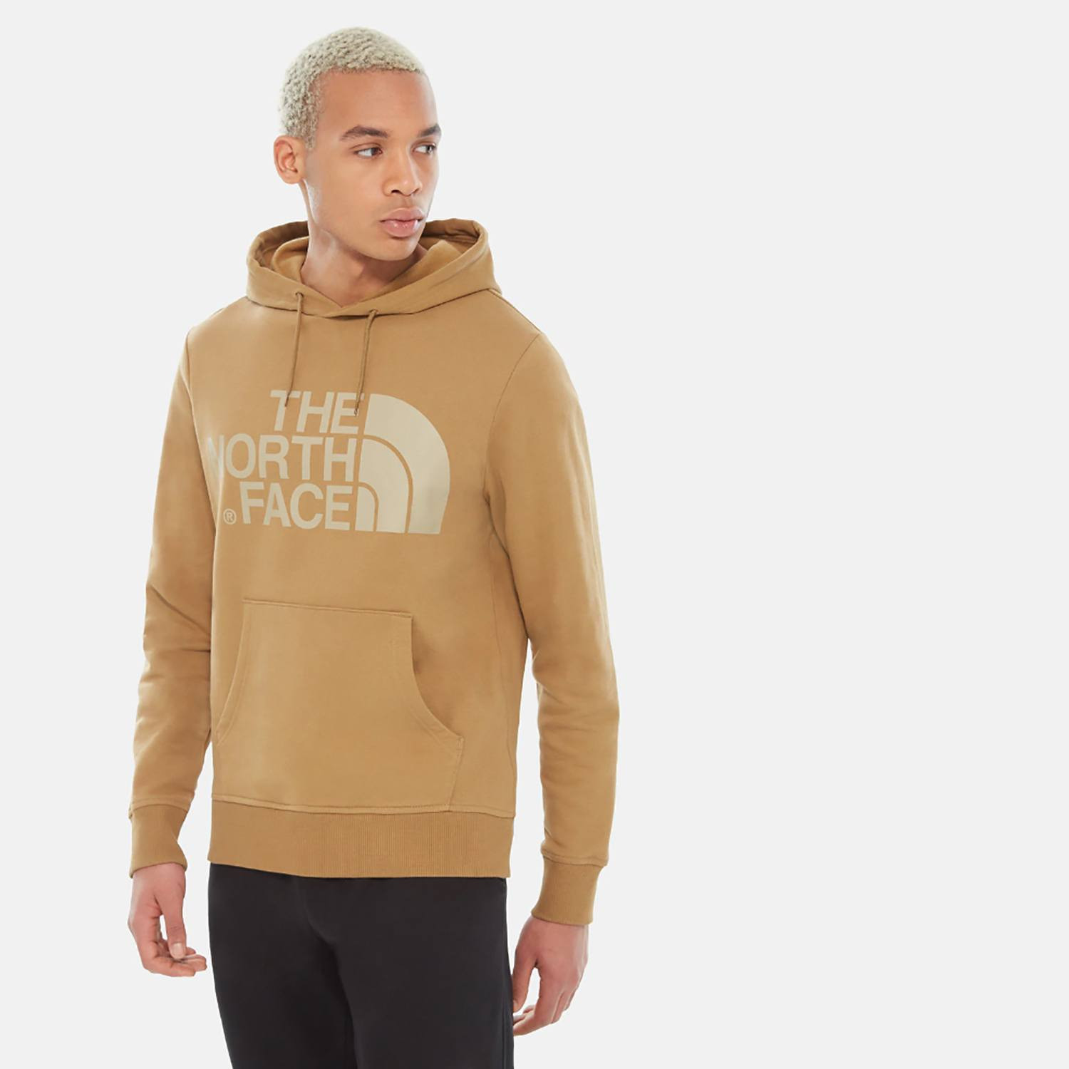 THE NORTH FACE M STANDARD HOODIE (9000036722_19279)