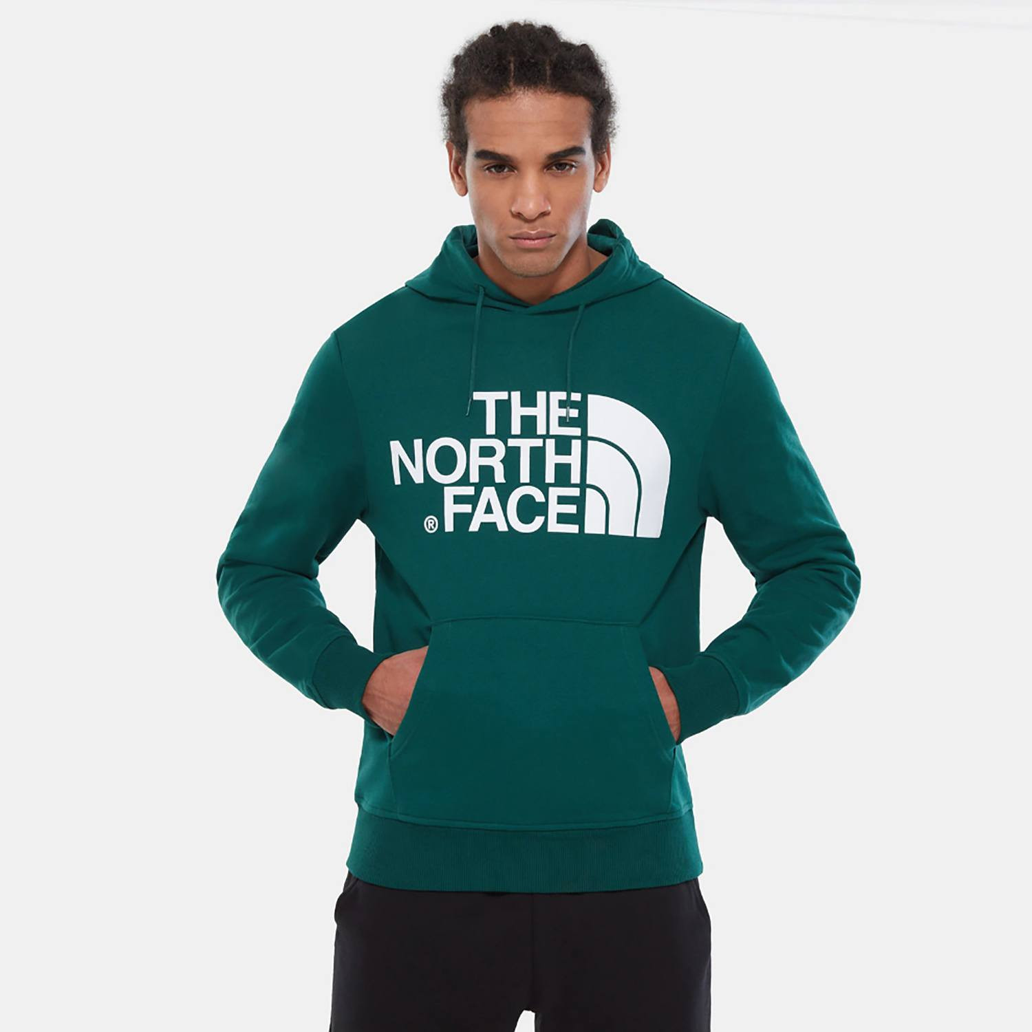 THE NORTH FACE M STANDARD HOODIE (9000036725_41091)